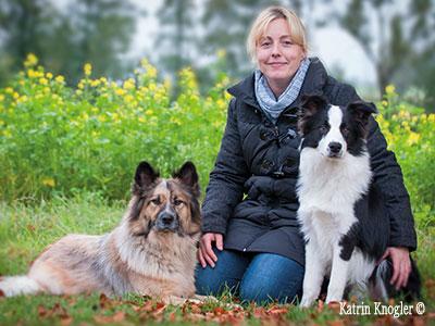 Hundefriseur Hundstauglich - Behamberg nähe Steyr